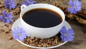 Можно ли пить цикорий маме на грудном вскармливании – ищем замену кофеину