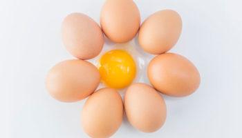 Можно ли детям яйца, какие, сколько