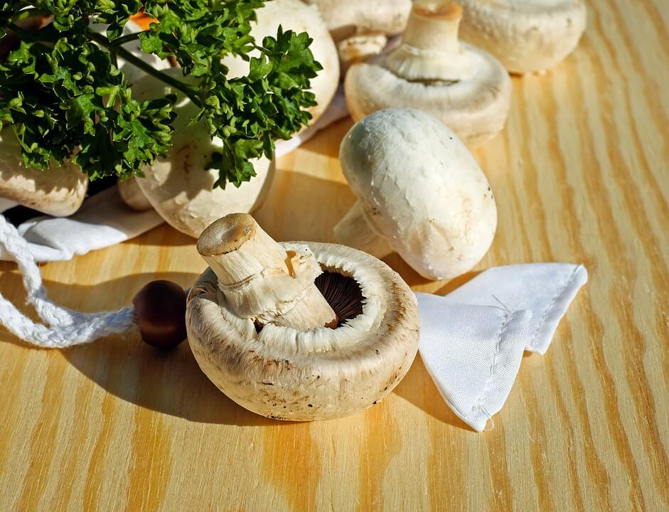 грибы детям
