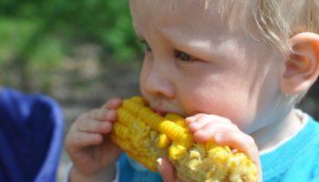 можно ли детям кукурузу