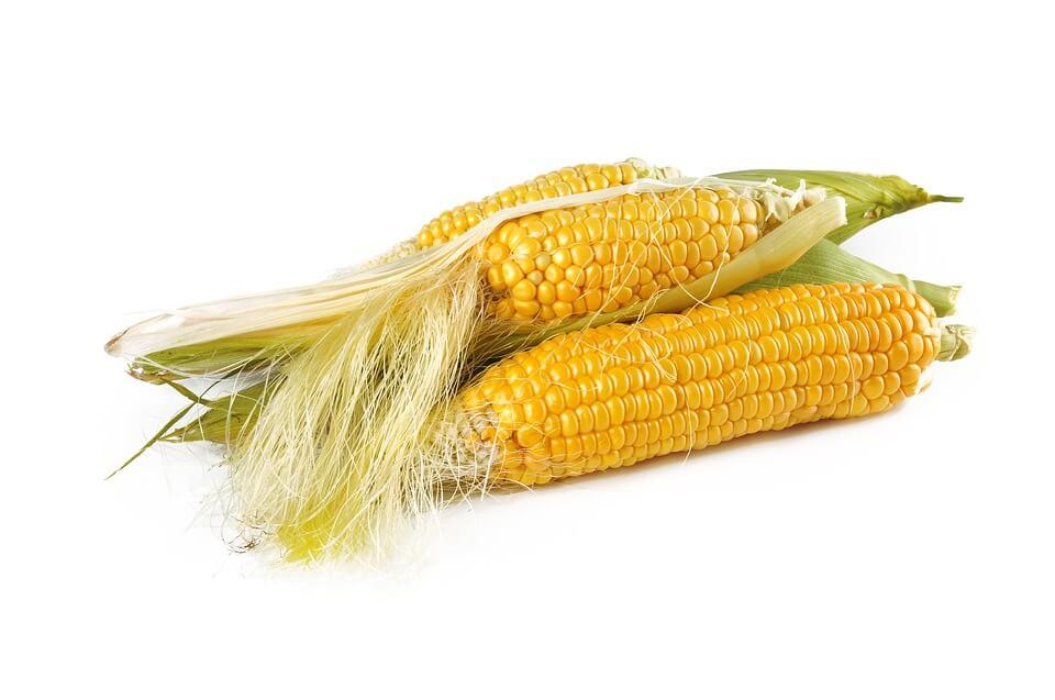 можно ли детям давать кукурузу