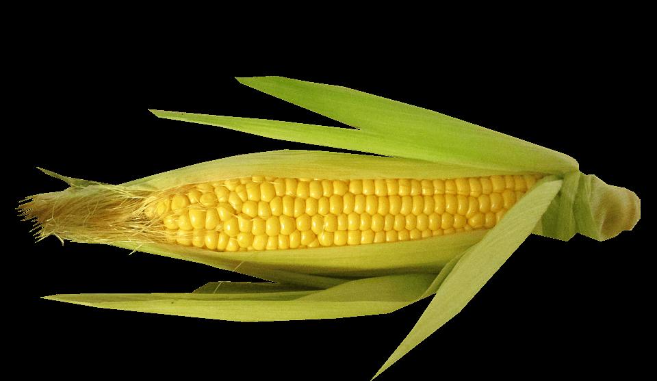 можно ли детям консервированную кукурузу