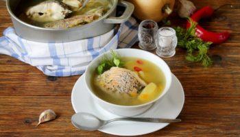 Можно ли ребенку уху? Рецепты рыбных супов для детей от 1 года