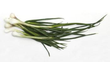 Можно ли детям зеленый лук, с какого возраста, сколько