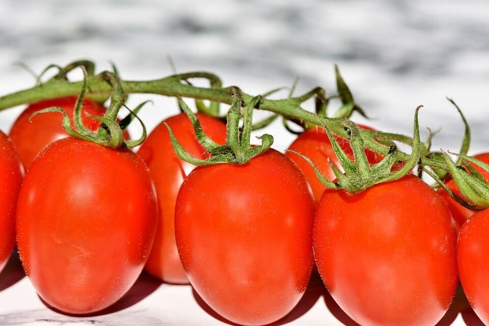помидоры детям