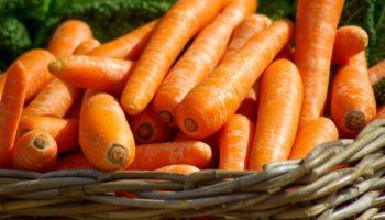 Можно ли детям морковь, с какого возраста, сколько