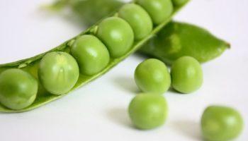 Можно ли детям зеленый горошек: свежий, консервированный, с какого возраста