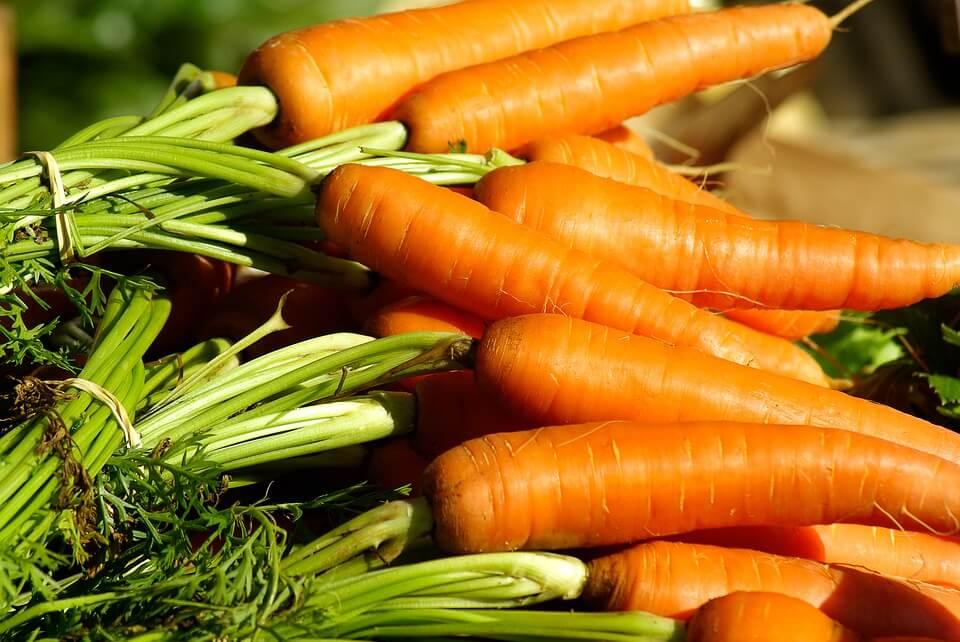 можно ли детям морковь