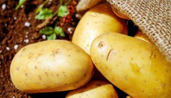 Можно ли детям картошку, с какого возраста, как готовить