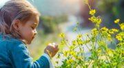Аллергический поллиноз у детей: причины, признаки, профилактика