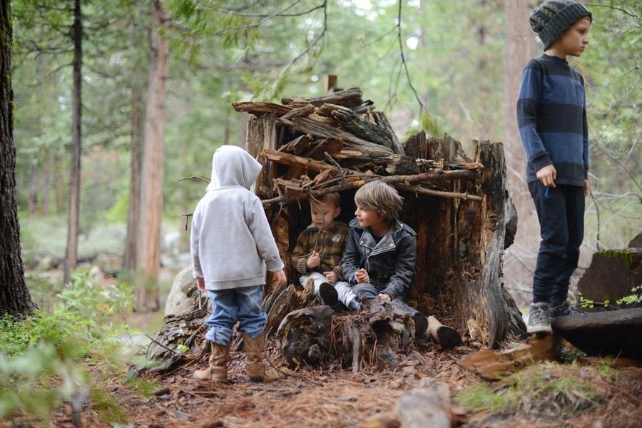 джоди мокаби семья живет в лесу