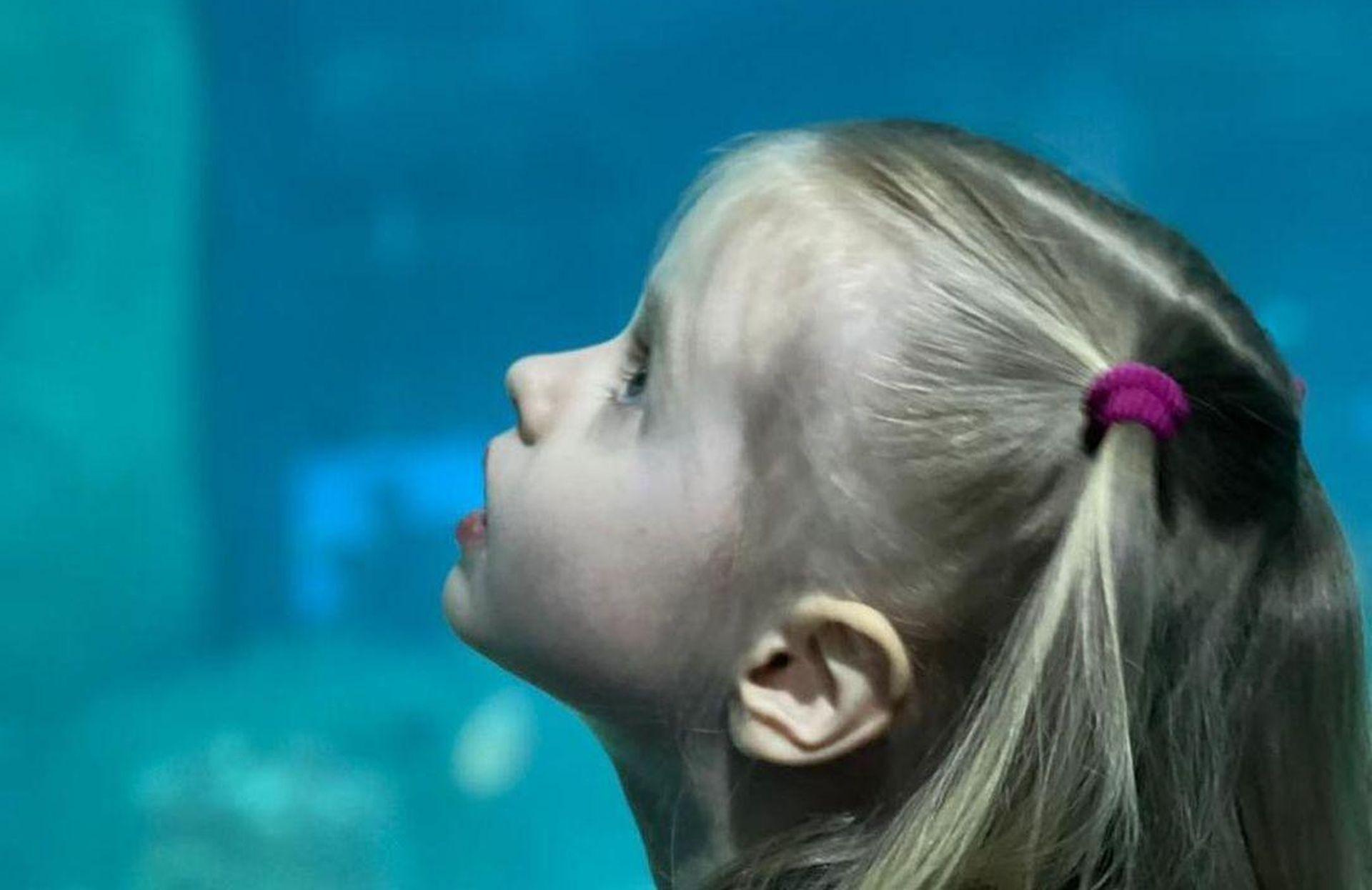 безруков с детьми в океанариуме